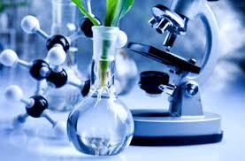 Biochemistry Dissertation Paper